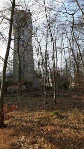 Bismarckurm vom Wald